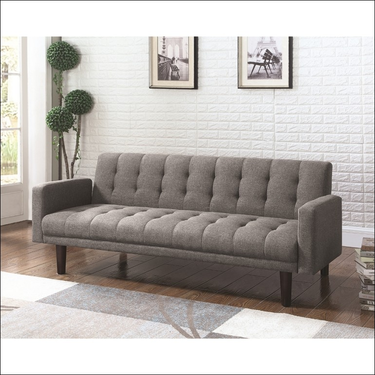 Amazing Futon Type Sofa Beds Furniture Marvelous Futon Type Sofa Beds Futon Couch Cushions