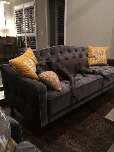Amazing of Tufted Sleeper Sofa Living Room Furniture Best 25 Sleeper Couch Ideas On Pinterest The Sleeper Game Room