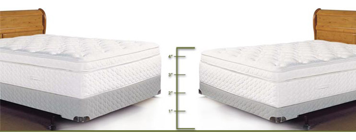 Awesome Low Profile Box Spring And Mattress Low Profile Box Spring
