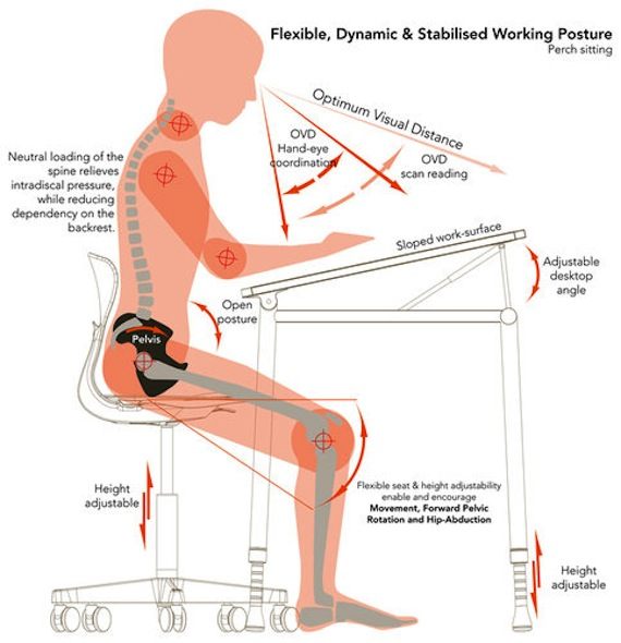 Beautiful Sit Ergonomically At Desk Awesome Office Chairs For Good Posture Best Office Chair Reviews