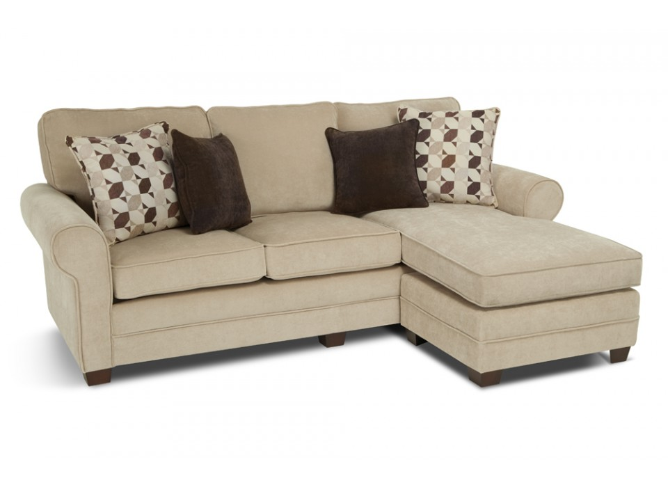 Chic Sleeper Sofa With Chaise Lounge Small Sectional Sofa Home