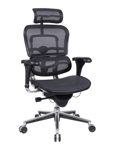 Brilliant Ergonomic Task Chair Eurotech Ergohuman Me7erg Mesh Executive Chair With Headrest