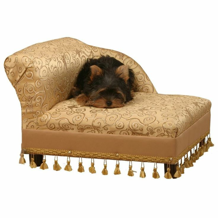 Brilliant Mini Chaise Lounge Sofa 33 Best Toy Poodles Pet Sofa Beds And More Images On Pinterest