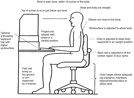 Brilliant Proper Desk Ergonomics Ergonomic Pictures Posture Photo