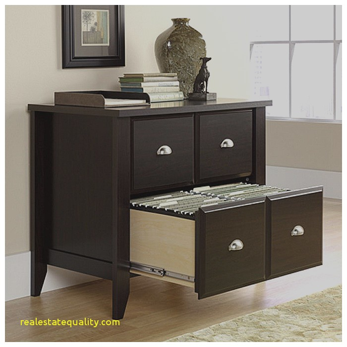 Chic Filing Cabinets For Home Use File Cabinet File Cabinets For Home Use Lovely Files Organizer