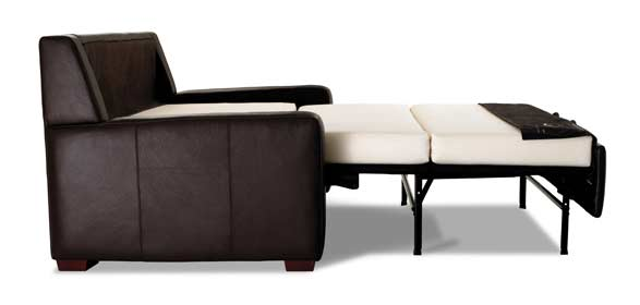 Elegant Small Pull Out Couch Free Up Space With A Pull Out Couch We Bring Ideas