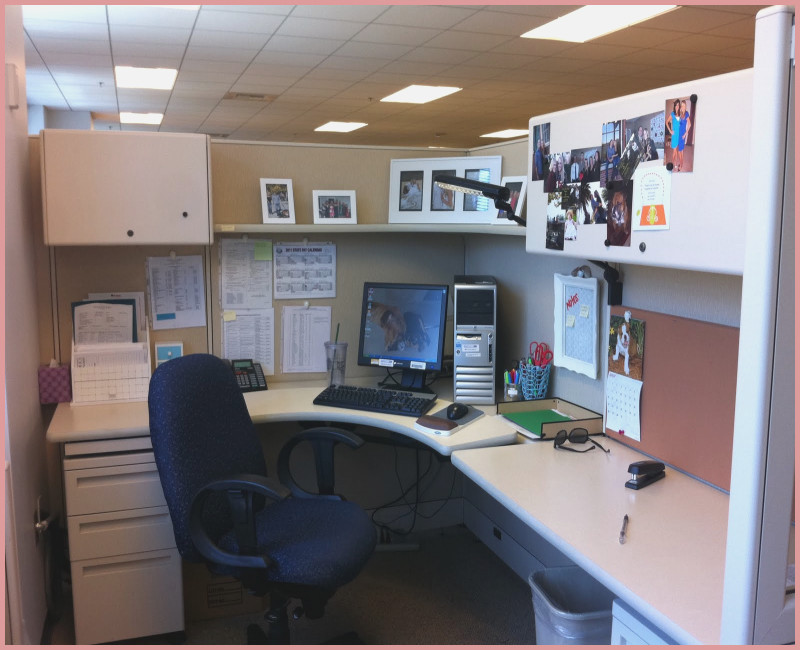 Incredible Home Office Cubicle Small Office Cubicle Behavior Interactions Buygameco
