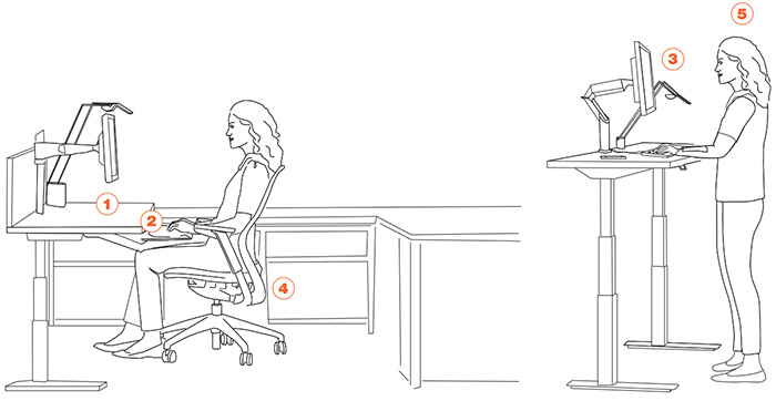 Lovable Sit Ergonomically At Desk An Ergonomic Setup Guide Sit To Stand Workstation Workplace