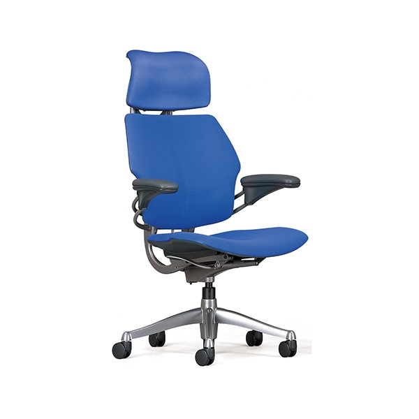 Stylish Ergonomic Task Chair Humanscale Freedom Task Office Chair Relax The Back