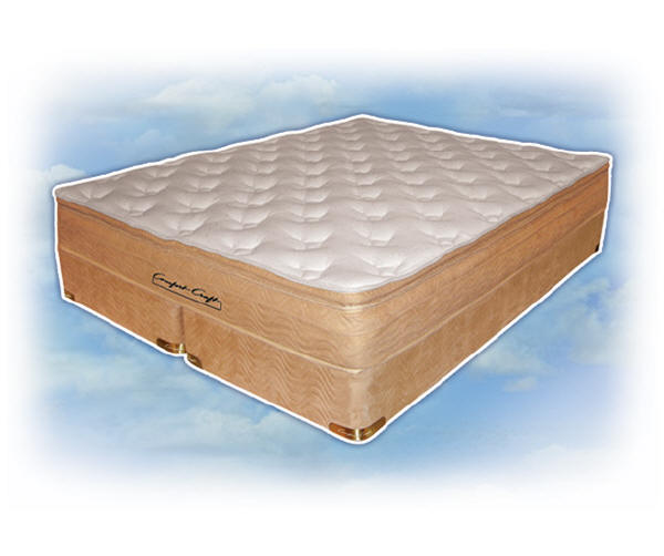 Unique Replace Waterbed Mattress With Regular Mattress Waterbeds Softside Waterbed Comfort Craft Tampa Fl Semi Waveless