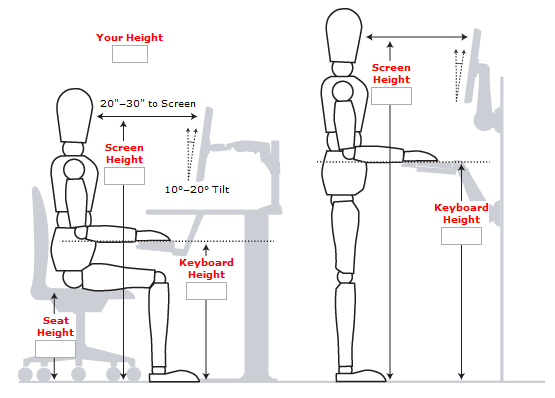 Wonderful Ergonomic Way To Sit At A Desk Standing Desk Guide Measurements Examples And Benefits